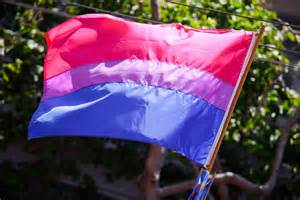 bisex flag